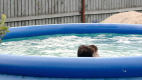 Boy swimming in inflatable pool in the yard Stock Photo