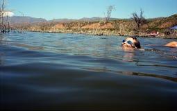 Boy Swimming In Lake stock photo