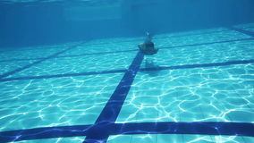 Boy Swimming in a Pool. Young Boy Swimming Underwater in a Pool stock footage