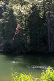 Boy (9-11), in swimming shorts, letting go of rope swing above lake Royalty Free Stock Photo