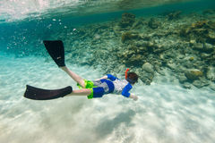 Boy swimming underwater. Teenage boy swimming underwater in shallow turquoise water at coral reef Stock Images