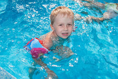 Boy swims in the pool Stock Photography