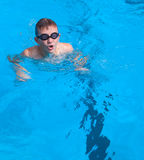 Boy swims Royalty Free Stock Image