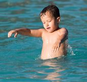 Boy swims in the water park Royalty Free Stock Photo
