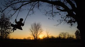 Boy swinging. Young child swinging on swing in sunset Royalty Free Stock Images