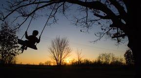 Boy swinging Royalty Free Stock Images