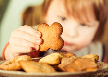 Boy taking cookie Royalty Free Stock Images