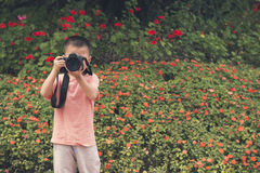 little photographer Stock Photography