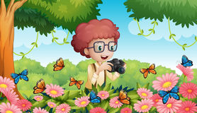 Boy taking picture of butterflies in garden Royalty Free Stock Photography