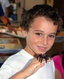 Boy with tarantula on hand Royalty Free Stock Photos