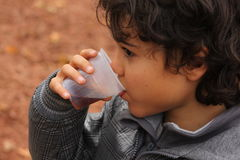 Boy with tea. Outdoor autumn portrait of a boy with cup of tea Royalty Free Stock Image