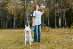 Boy teenager owner of a white dog Husky drinking water from a bottle, walking with dog in the park royalty free stock images