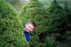 Boy teenager peeking out of a bush Stock Photography