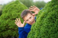 Boy teenager peeking out of a bush Royalty Free Stock Photo