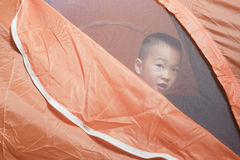 Boy in tent Stock Image
