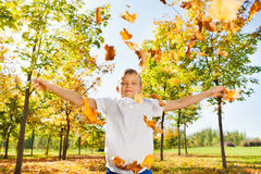 Boy throwing leaves in the air during autumn day Stock Photography
