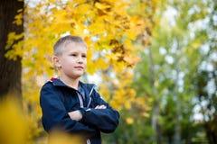 The boy throws autumn leaves. Joyful child. Park, autumn day stock image
