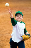 Boy throws baseball Stock Images