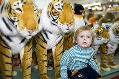 A boy and a tiger. Boy sits among soft toys tigers in store royalty free stock image