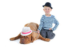 Boy and Tired Dog Royalty Free Stock Image