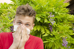 Boy with tissue covering his nose, allergies. Teen having pollen allergies,holding tissue over his nose looking at camera stock image