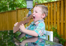Boy About to Eat a Chocolate Bunny Stock Image
