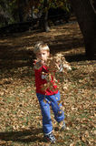 Boy Tossing Leaves. A four year old boy tossing leaves in forset Royalty Free Stock Photos
