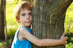 Boy touch tree in forest - child care ecology Stock Image