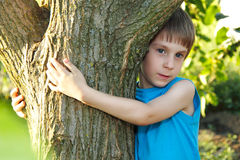 Boy touch tree in forest - child care ecology Royalty Free Stock Photos