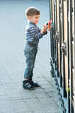 Boy with toy car Stock Photo