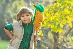 Boy with a toy horse Stock Photos