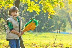 Boy with a toy horse Stock Photography