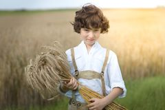 A boy in traditional Bavarian clothes stands in the field. A boy in traditional Bavarian clothes stands in the field and holds a sheaf of rye in his hands Royalty Free Stock Images