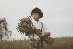 A boy in traditional Bavarian clothes stands in the field. A boy in traditional Bavarian clothes stands in the field and holds a sheaf of rye in his hands Royalty Free Stock Image