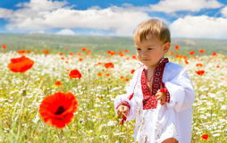 Boy in traditional clothes Stock Images