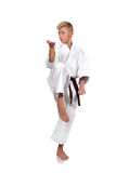 Boy training karate Stock Images
