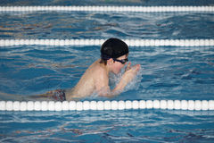 The boy trains in swimming pool, before the compet. The boy trains in swiming pool, swims breaststroke, before the competition Stock Images