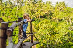Boy traveler on view point in the background of a jungle, Bali, Indonesia.  stock photos