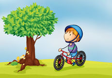 A boy and a tree. Illustration of a boy and a tree in a beautiful nature Royalty Free Stock Photography