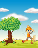A boy and a tree Royalty Free Stock Photo