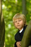 Boy in Tree Royalty Free Stock Photo