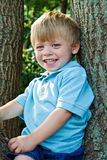 Boy in tree stock images