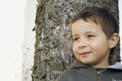 Boy with Tree. A five years old boy playing in his home`s garden Royalty Free Stock Images