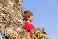 Boy Tree Dreaming Future Stock Photo