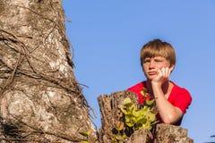 Boy Tree Future Stock Photography