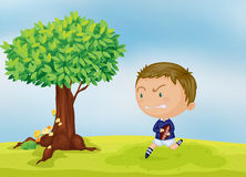 A boy and a tree Royalty Free Stock Photography