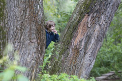 Boy in the trees. In a forest Stock Images