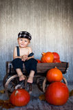 Boy in a trolley, full of pumpkins Stock Image