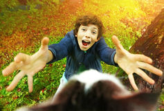 Boy try to take the cat off the tree. Preteen handsome boy try to take the cat off the tree on the autumn garden background Stock Photo