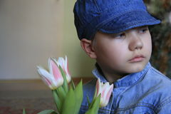 Boy with tulips Stock Images
